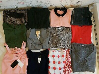 Large Bundle 12 Items Ladies Size 12. Skirts, Jumpers, Dresses, Tops. BNWT