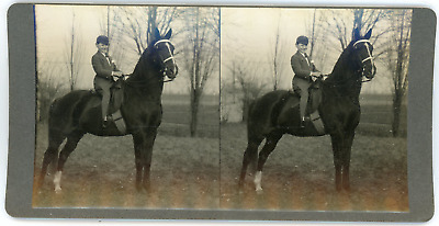 Stereo, Young boy riding a horse, circa 1900 Vintage stereo card - Keystone.