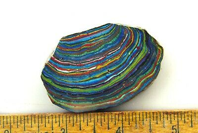 BUTW Rainbow Calsilica Lapidary Rough Slab for Cabochons Cal silica 9553P