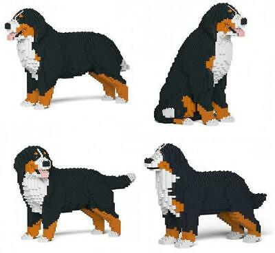 Build Your Own Bernese Mountain Dog Gift