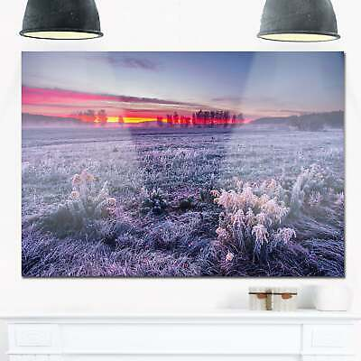 Colorful Cold Frosty Morning - Landscape Glossy Metal Wall