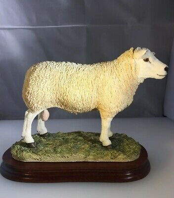 New, Boxed  Border Fine Arts Large Texel Ram  limited Edition,B0530. Very Rare