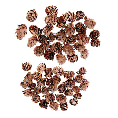 60 Pieces Mixed Natural Pine Cones Dried Table Ornament Home Decoration DIY