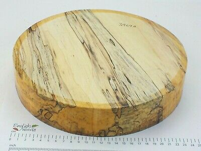 English Spalted Beech woodturning or wood carving bowl blank.  255 x 50mm. 3969A