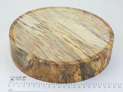 English Spalted Beech woodturning or wood carving bowl blank.  230 x 50mm. 3970A