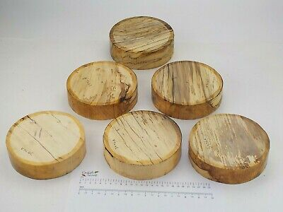 6 English Spalted Beech woodturning or carving bowl blanks.  155 x 40mm. 3976A