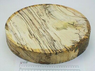 Huge English Spalted Beech woodturning or carving bowl blank.  405 x 68mm. 3978A