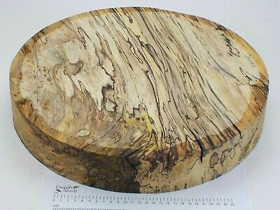 Huge English Spalted Beech woodturning or carving bowl blank.  405 x 68mm. 3979A