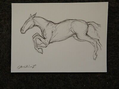 Original expressive style pencil drawing sketch of a horse leaping jumping