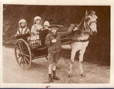 Hungarian Royal Family Exile Madeira Poney team exil famille royale Photo 1920'