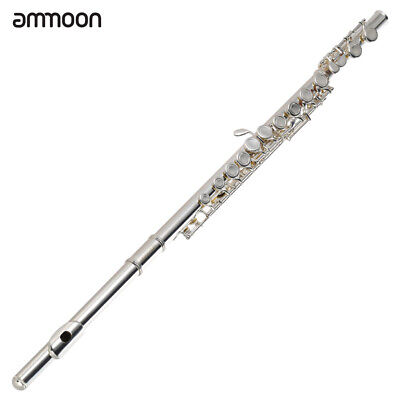 Brand New Silver School Band Student C Flute W/Kit Case Gloves C6Q6