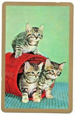 CATS vintage Playing cards swap card