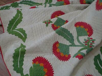Christmas Coxcomb +Berries! Antique Red Cheddar Green Applique QUILT 94x92