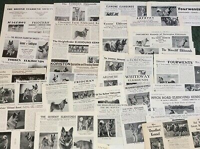 Elkhound Kennel Breed Clippings X 40
