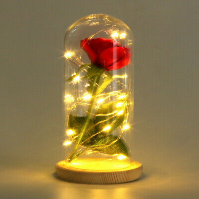 Beauty and the Beast Red Rose in a Glass Dome with LED Light Wooden Base Xmas US