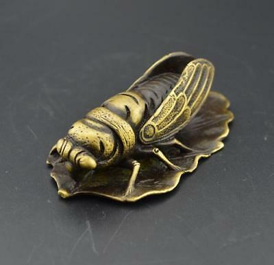 Old Chinese   Bronze Copper Feng shui Wealth Cicada Statue a824