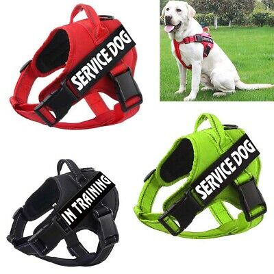 Puppy Service Dog Harness & 2 Free Patches Outdoor Walking Pet Cat Vest Collar