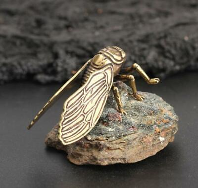 Chinese Collection old Asian Antique Collectible Brass ZCicada Exquisite statue