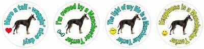 *252 fun Manchester Terrier stickers seal LASER waterproof 4 styles 1""