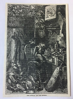 1885 magazine engraving~ THE COBBLER AND the MONKEY ~ scary image