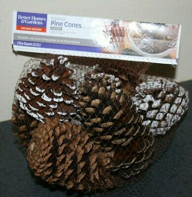 Better Homes & Gardens Cinnamon Scented Pine Cones & Silver NEW 3 Dry Quarts