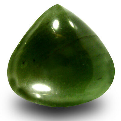 15.70 CT Éblouissant Poire Cabochon (17x18 mm) Ive Vert Un-Heated Serpentine Gem
