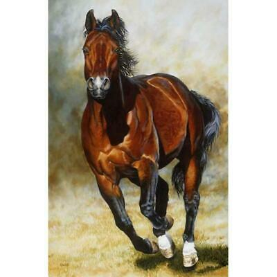 DIY 5D Diamond Painting Kits for Adults Full Drill Horse Running