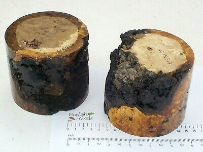 2 English Burr Brown Oak woodturning or carving bowl blanks.  105 x 90mm.  4183A