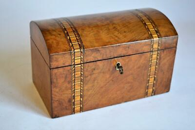 SUPERB ANTIQUE VICTORIAN BURR WALNUT TUNBRIDGE WARE TEA CADDY c.1880s