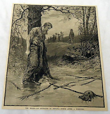 1889 magazine engraving ~ WHITE-CAP OUTRAGES IN INDIANA ~ Scene After a Whipping