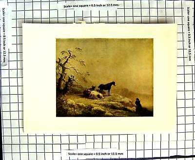 Old Antique Print C1907 Colour Plate Morland Winter Scene Cattle Animals 20th
