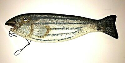 """Signed Randy Hofman Carved Wood Blue Fish Striped Bass 18"""" long"""
