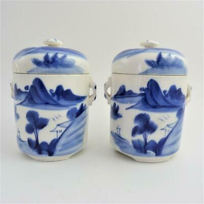 Pair Of Chinese Blue And White Porcelain Tea Jars And Covers, 19Th Century