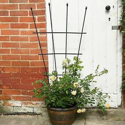 Garden Gear 1.2m Fan Trellis Garden Plant Flower Support Planter Frame Lattice