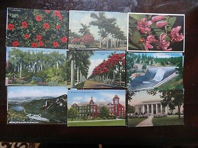 LOT OF 50 VINTAGE POSTCARDS ,~ PREMIUM LOT~ ALL USA , 1900s ~ 1950s ,