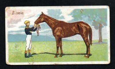 Bellis 1906 Wills 'S Cigarettes Tobacco Horses Of Today #38  Good