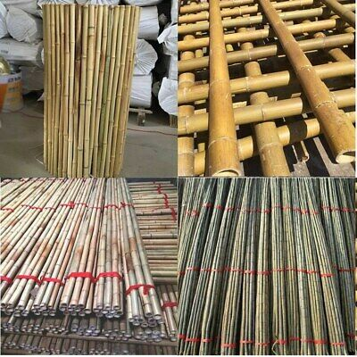 2Ft,3Ft,4Ft,5Ft,6Ft,7Ft Strong Heavy Duty Bamboo Thick Plant Support Garden Cane