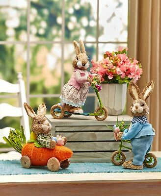On The Go Dressed Up Easter Bunny Figure Riding Scooter Bicycle Or Carrot Car
