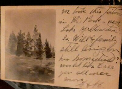 Vintage 1909 postcard Photograph  Yellowstone Park w Handwritten message posted