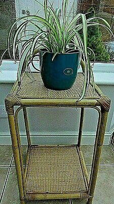 Vintage Cane Bamboo Square Table / plant stand ~ Conservatory ~ Sun Room