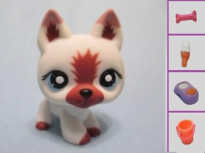 Littlest Pet Shop Dog German Shepherd 1421 and Free Accessory Authentic Lps