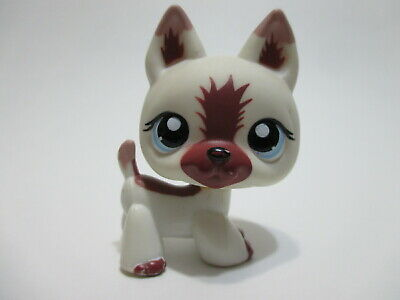 Littlest Pet Shop Dog German Shepherd 1421 Authentic Lps Blemished