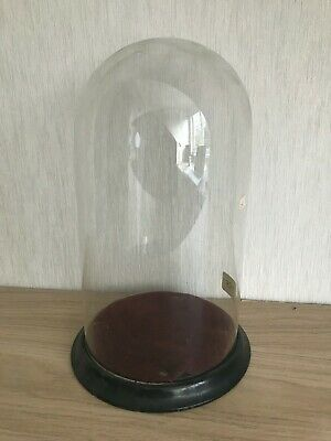 Antique Victorian Glass Dome + original Base 12.5 inches high 7 inches diameter