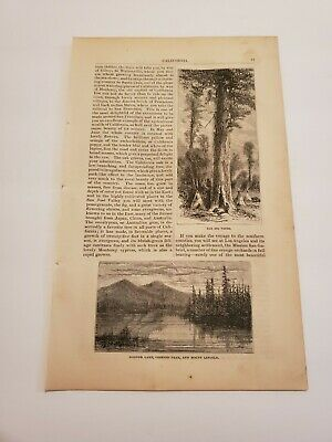 Donner Lake & View Near the State Lime Truckee River California c 1872 Engraving