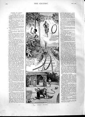 Original Old Antique Print 1891 Great Snakes Comedy Railway Native Victorian
