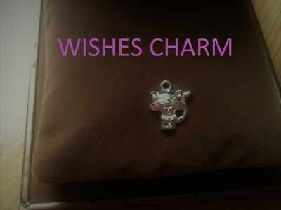 Wishes Charm. Wish for- Money? Love? Good Luck? Beauty? +More? 32 yrs spell exp.