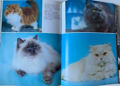 Beautiful Cats and Kittens Reference Book