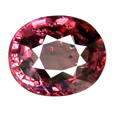 1.27 CT Clignotant Coupe Ovale (7 X 6 mm) Tanzanie Rose Malaya Gemme Grenat