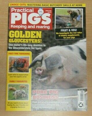 Practical Pigs magazine #38 Spring 2020 Golden Gloucesters + dietary supplements