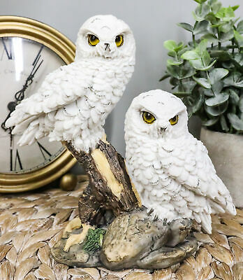 """White Snowy Baby Owlets Perching On Winter Forest Tree Branch Statue 7""""L Owls"""